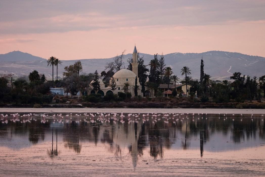 τα φλαμίνγκο και το Χαλά Σουλτάν Τεκκέ στην Λάρνακα της Κύπρου
